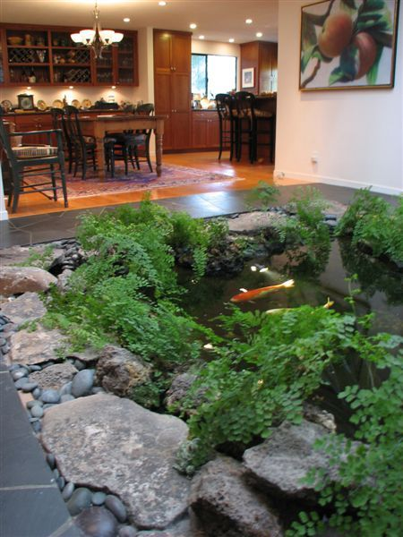 Building an indoor koi pond next day koi for Small pond house plans