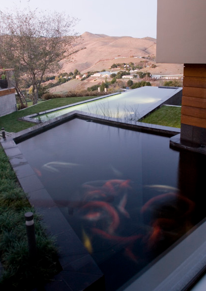 Your koi pond and reselling your home next day koi for Contemporary koi pond design