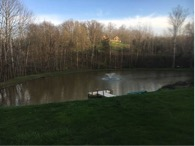 large one acre pond looking for koi to fill