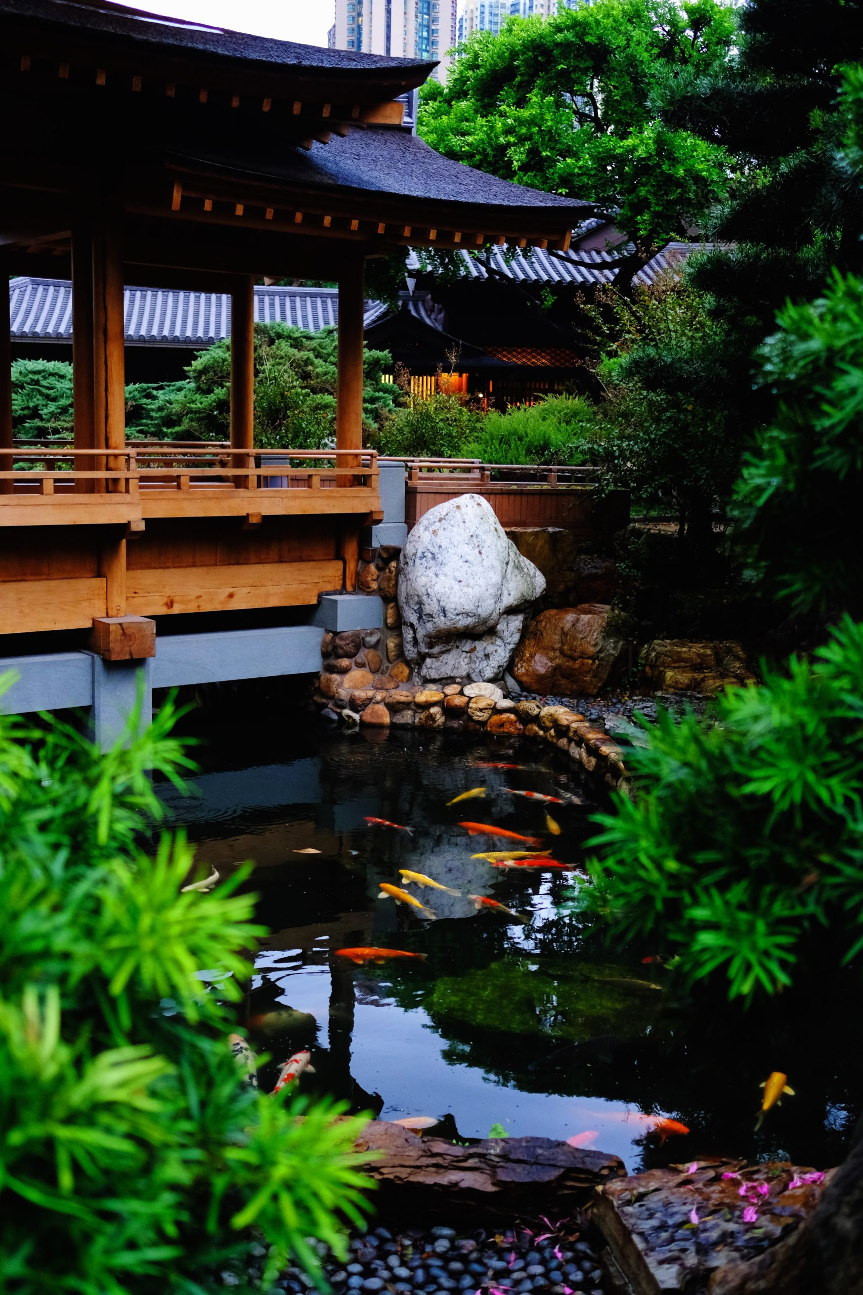 Bog Filters And Your Koi Pond Next Day Koi